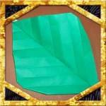 折り紙で葉っぱの立体的な折り方!あじさいやひまわりにも簡単な作り方