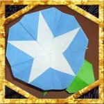 折り紙で朝顔と葉の折り方!五角形で簡単な立体の作り方を紹介