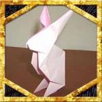 折り紙でうさぎの折り方!比較的簡単な立体の作り方を紹介