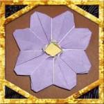 折り紙でコスモスの折り方!1枚で細かい簡単な折り方を紹介