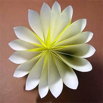 ハート 折り紙 折り紙 菊 折り方 : origamisho.com