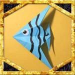 折り紙で熱帯魚(エンゼルフィッシュ)の簡単な折り方作り方