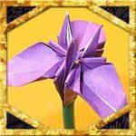 折り紙であやめ・花菖蒲の折り方!花弁3枚で簡単立体的な作り方